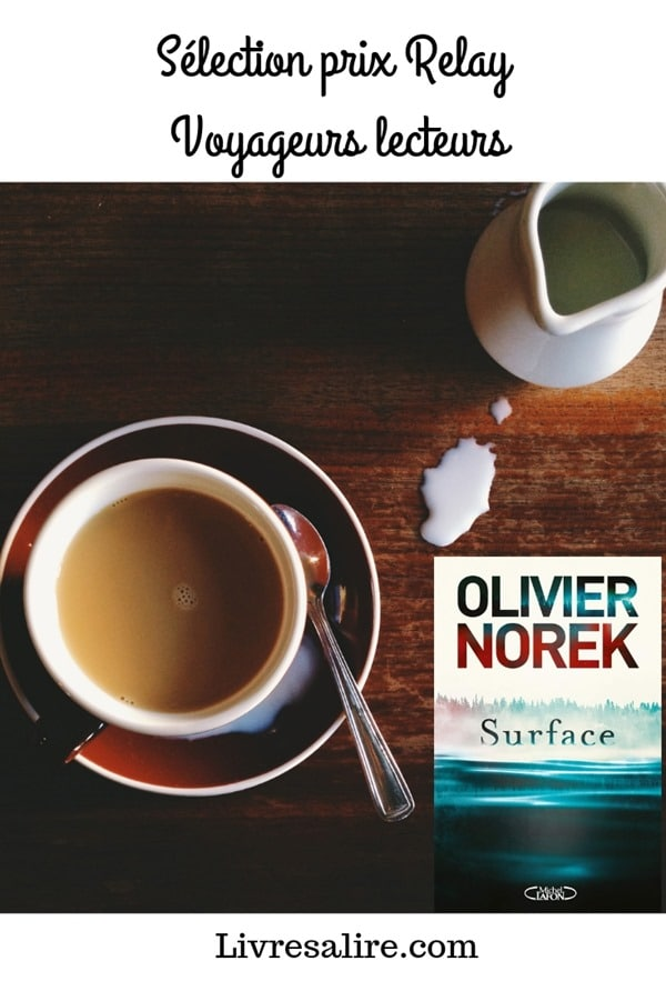 Surface - Olivier Norek - blog littéraire