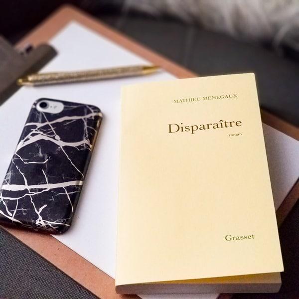 Disparaitre -Mathieu Menegaux - blogueuse litteraire .JPG