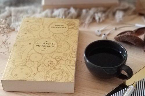 a soustraction des possibles - roman - Joseph Incardona