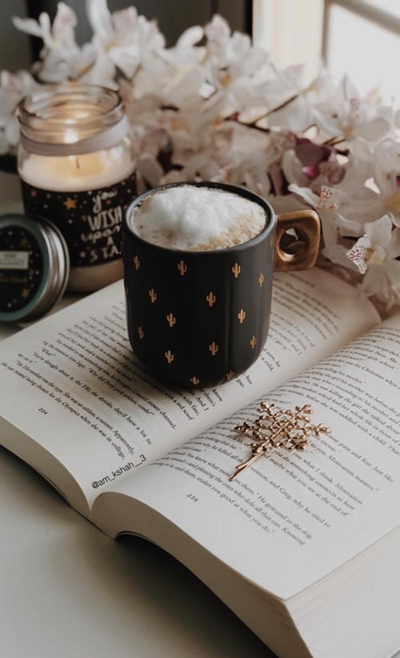 Blogueuse et blog littéraire