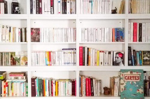 Comment ranger bibliothèque blog littéraire