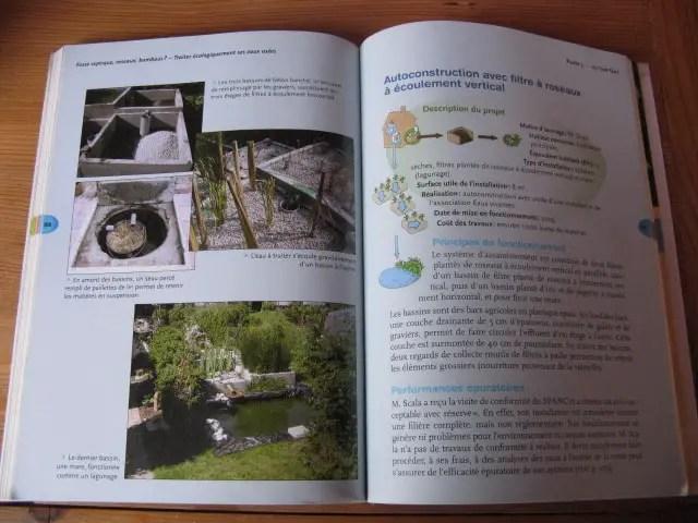 fosses septiques écologiques plantés de roseaux