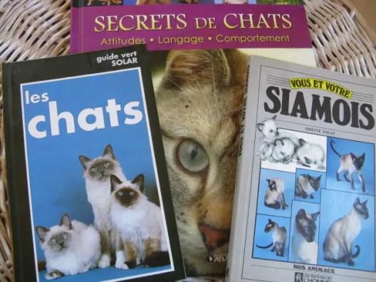 meilleurs livres sur les chats