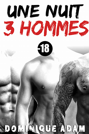 """Couverture """"Une nuit, 3 hommes"""""""