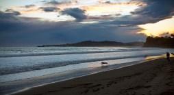 A Santa Barbara beach