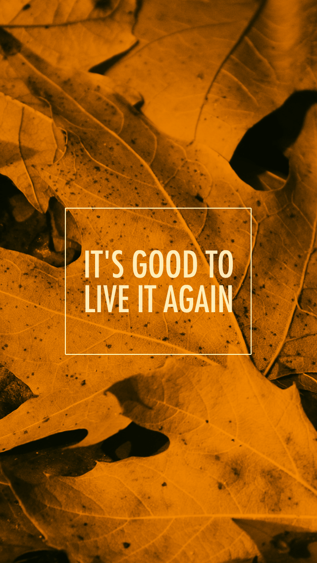 Free Fall Wallpapers For My Phone Wednesday Gratitude Amp Free Iphone Wallpapers Lix Hewett