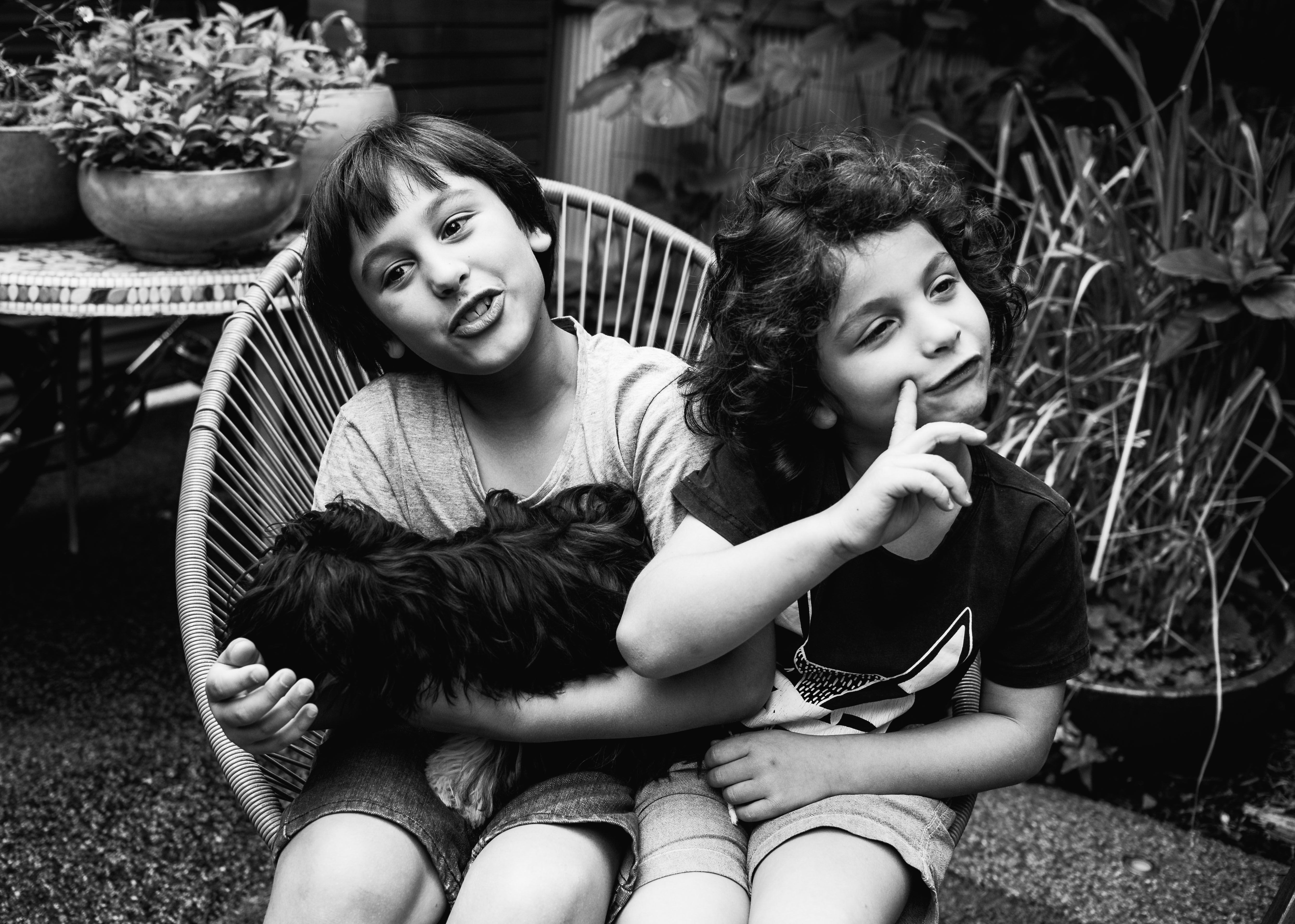 funny photograph of brothers and their pet dog in Carlton North, Melbourne, Australia