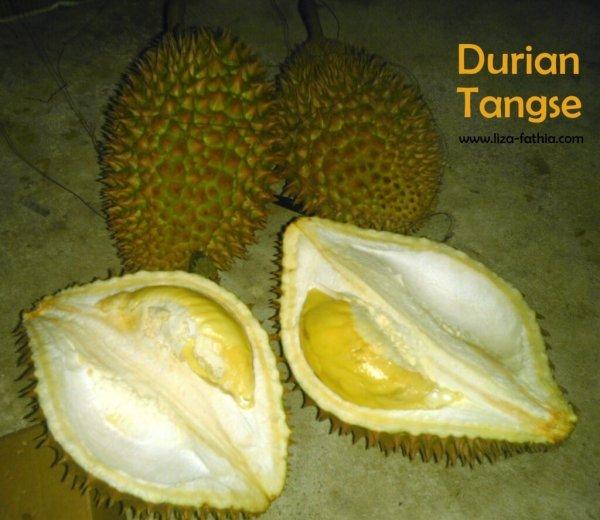 Dibalik kelezatannya, ada beragam manfaat yang terkandung durian untuk kesehatan