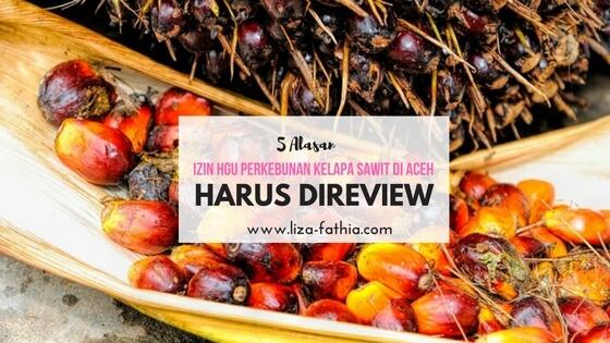 5 Alasan Izin HGU Perkebunan Kelapa Sawit di Aceh Harus Direview