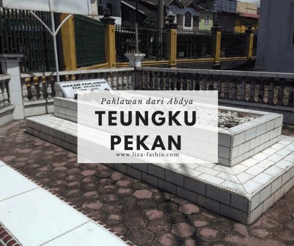 Teungku Peukan, Pahlawan dari Aceh Barat Daya