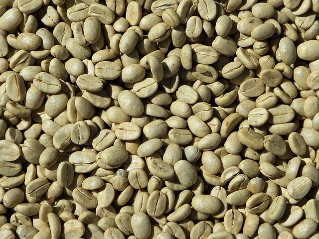 manfaat kopi hijau