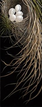1. Grass Nest