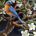 Bluebird with Apple Blossoms