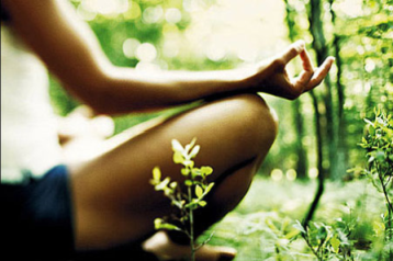 Yoga Pose Green Forest