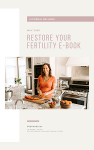 Restore Your Fertility Ebook