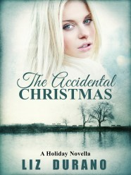 ACCIDENTALXMAS_EBOOK