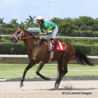 Tale of a Champion (KY) with jockey Luis Saez returns from his win