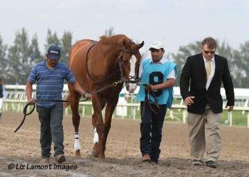 The Donn Handicap 2012