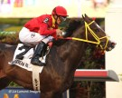 Trinniberg (KY) finishes 1st at Gulfstream Park
