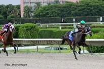 My Brown Eyed Guy (FL) with jockey Antonio Gallardo on board wins the Florida Stallion Stakes Affirmed Division