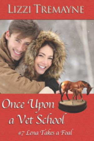 Once Upon a Vet School #7 Cover