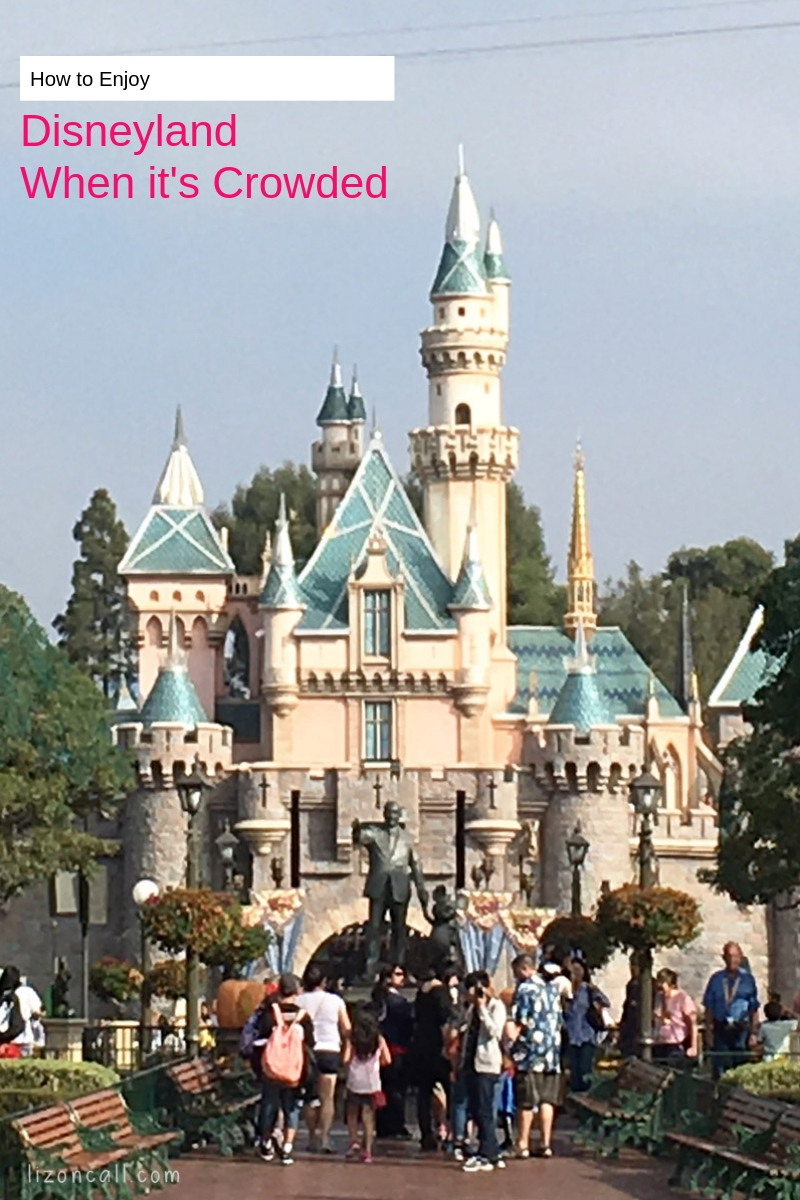 How To Enjoy Disneyland When It's Crowded