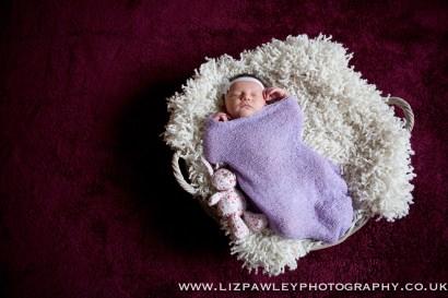 Copyright Liz Pawley Photography