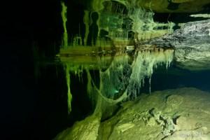 Hanging Roots in Olwolgin Cave II
