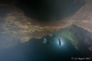 Diving in Niggle Cave, Camooweal