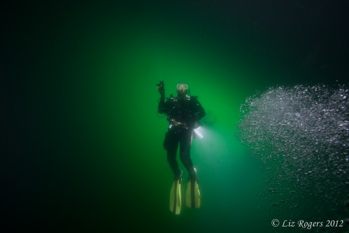 Diver overhead in One Tree