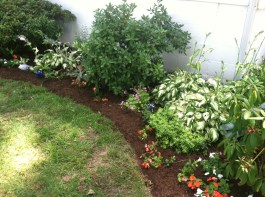 Chesapeake Side Garden