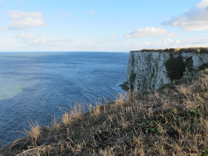Yorkshire childhood, cliffs at Bempton - photo @SandraDanby-1