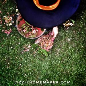 Lizzie Homemaker's 5 year old child making a witches brew with hydrangea and bubbly pink water to celebrate Halloween.