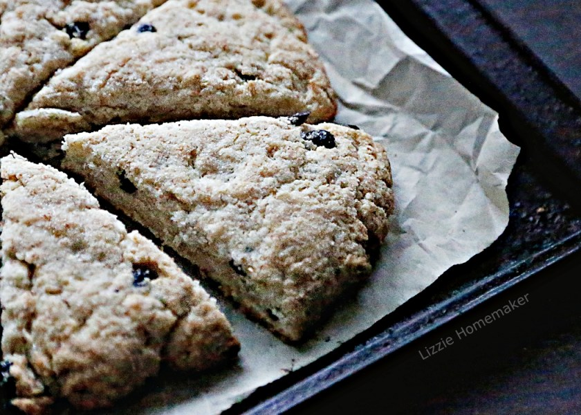 lizzie homemaker recipe for lactose intolerant friendly blueberry coconut milk scones