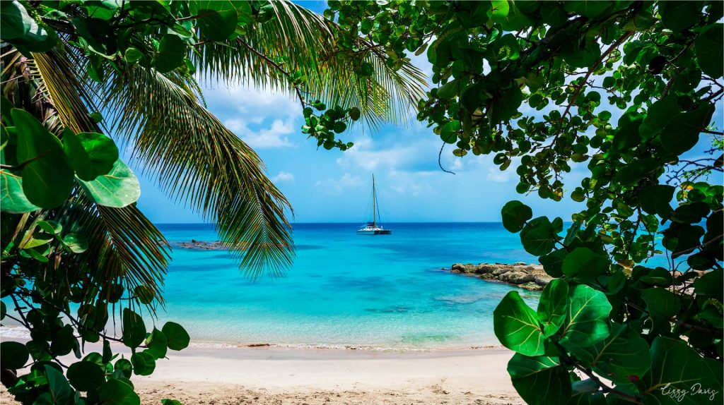 Serene tropical paradise views by travel photographer Lizzy Davis.