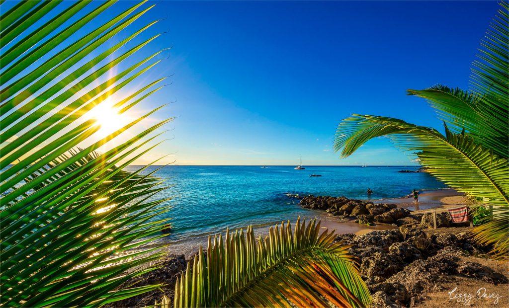 Caribbean landscape photo overlooking Folkestone Marine Park in Barbados.