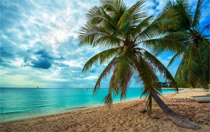 Beaches of Barbados in Photos: Paynes Bay Beach