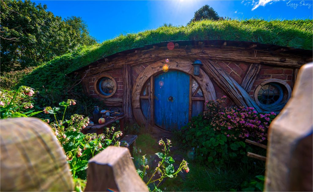 Early morning Hobbiton tour photo of a hobbit-hole with a blue door.
