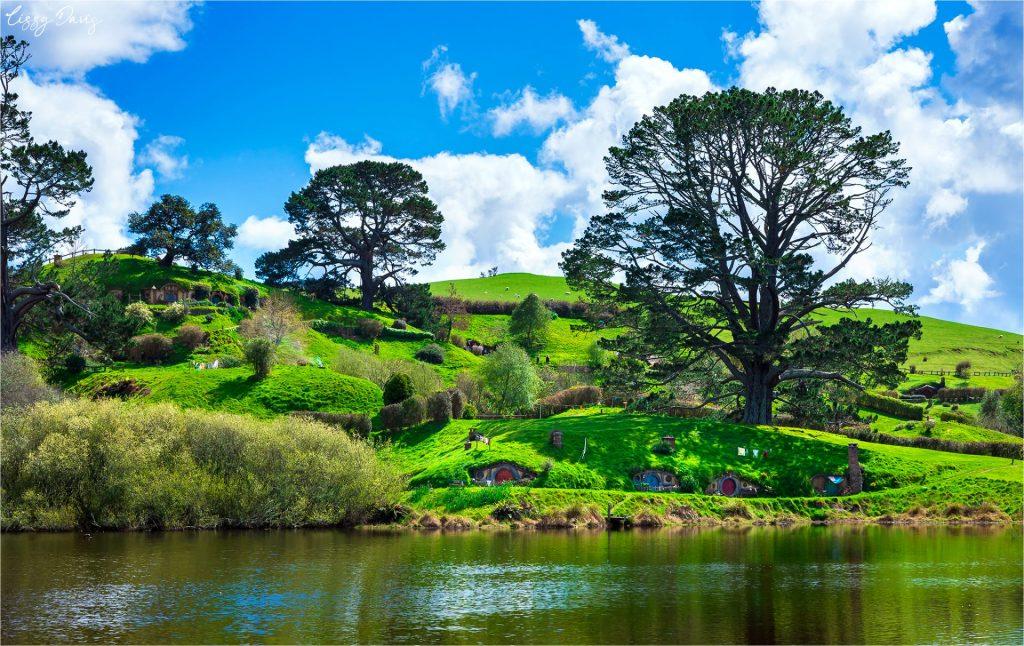 The Party Tree at the center of Hobbiton in Matamata, New Zealand.
