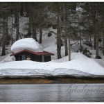 Cabin shrouded in snowfall, Prince William Sound.