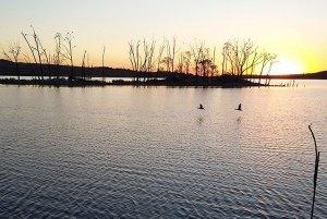 Nature Reserve Lake