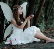 Posečena krila - ljubavni roman za čitanje odmah