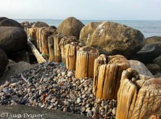 Gl. Skagens strand