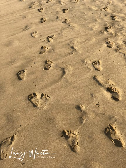 16 footprints in the sand