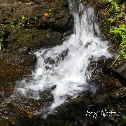 27 small waterfall botanical gardens