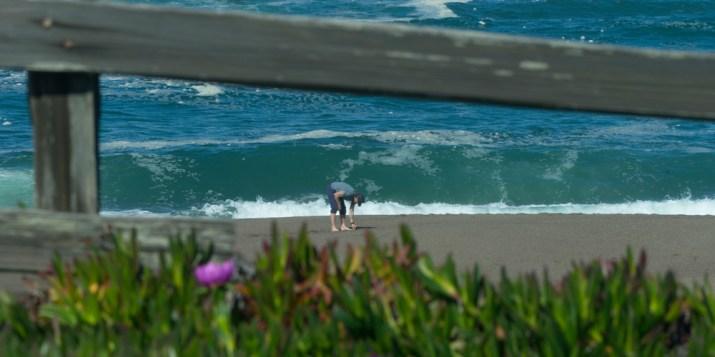 25 beach comber 02717