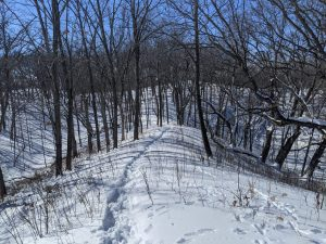 Snow trail at the LuLu lake Naural Area north of Lake Geneva