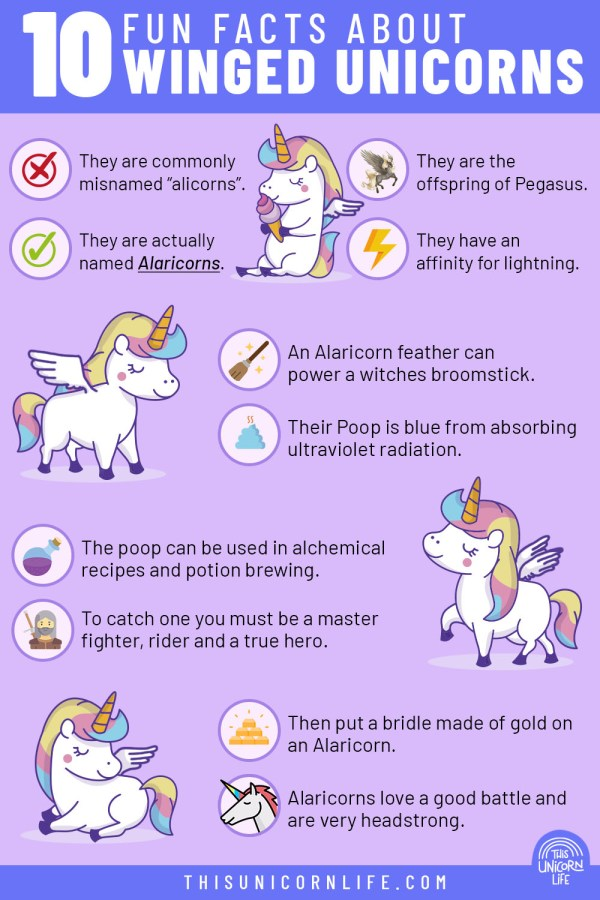 10-Fun-Facts-About-Winged-Unicorns-infographic