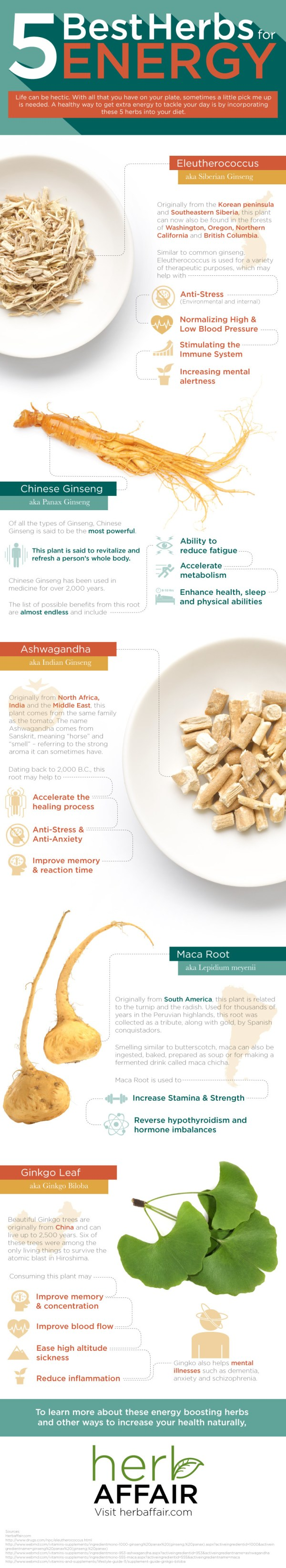 5-herbs-for-energy-infographic
