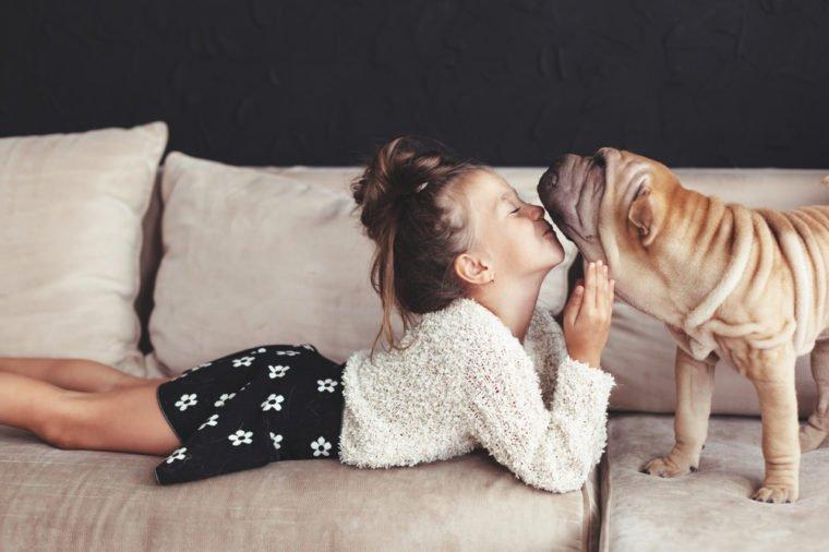 pets and kid on sofa